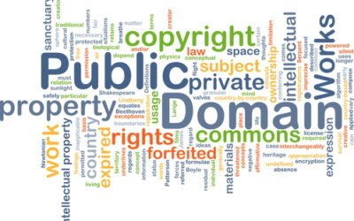 PUBLIC DOMAIN BECAME AN ISSUE THIS YEAR